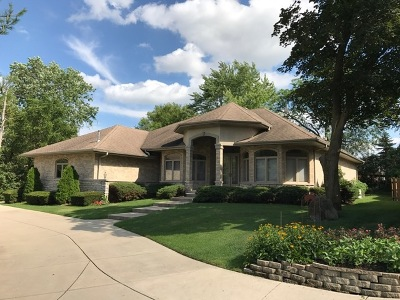 Lisle Single Family Home For Sale: 1801 Warrenville Road