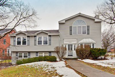 Hinsdale Single Family Home For Sale: 604 South Stough Street