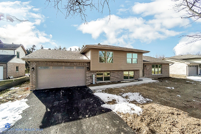 Mokena Single Family Home For Sale: 11741 West 187th Street