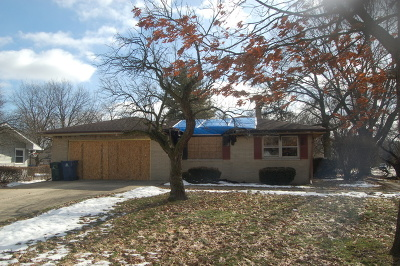 Naperville Single Family Home For Sale: 816 Emerald Drive
