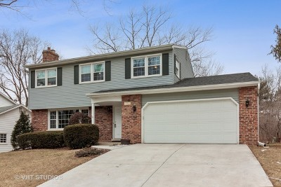 Downers Grove Single Family Home For Sale: 1212 Brookside Lane