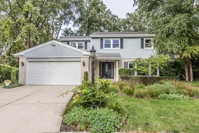 Wilmette Single Family Home For Sale: 104 Hollywood Court