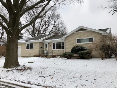 Lombard Single Family Home Contingent: 501 South Edgewood Avenue