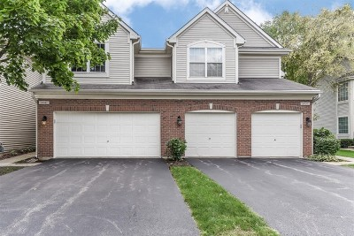 Schaumburg Condo/Townhouse For Sale: 1441 Sturgeon Bay Court