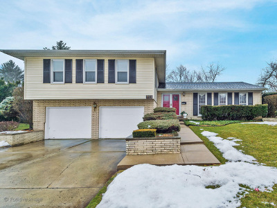 Lisle Single Family Home For Sale: 911 59th Street