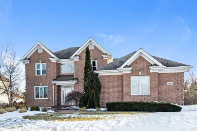Algonquin Single Family Home Price Change: 1681 Stone Ridge Lane
