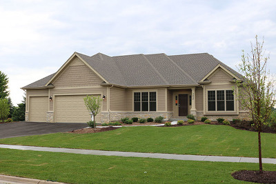 Geneva Single Family Home For Sale: 924 Bluestem Drive