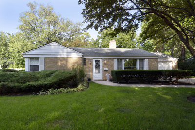 Mount Prospect Single Family Home For Sale: 510 South Emerson Street