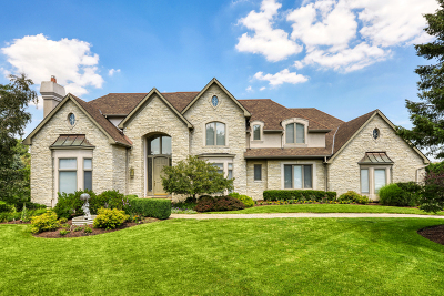 Oak Brook Single Family Home For Sale: 8 York Lake Court