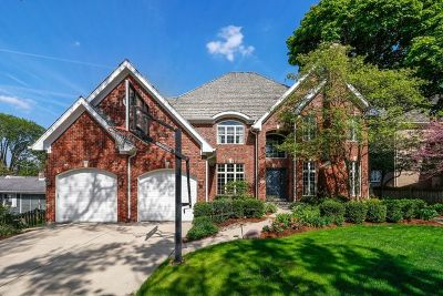 Hinsdale Single Family Home For Sale: 511 North Grant Street