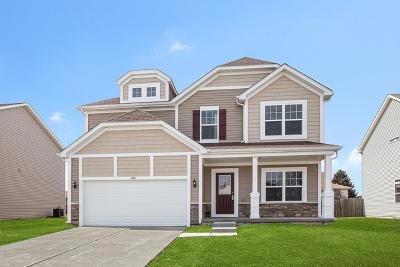 Plainfield Single Family Home For Sale: 2311 Haley Drive