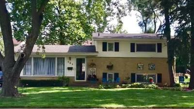Mount Prospect Single Family Home For Sale: 505 East Highland Avenue
