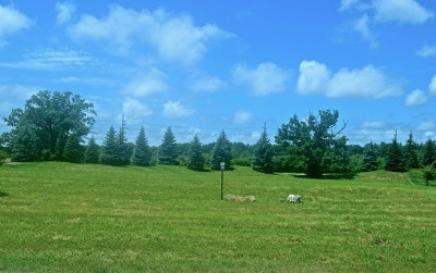 Mc Henry County Residential Lots & Land Contingent: 7445 Bonnie Drive