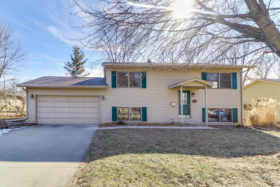 Normal Single Family Home For Sale: 505 East Summit Street