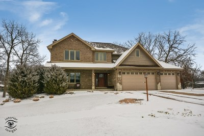 Tinley Park Single Family Home For Sale: 16973 Forest Glen Drive