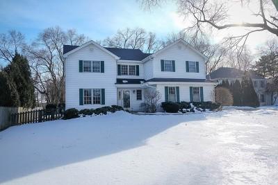 Geneva Single Family Home For Sale: 2112 Kaneville Road