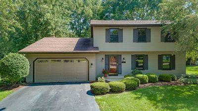 Naperville IL Single Family Home New: $399,900