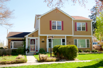 West Dundee Single Family Home For Sale: 71 Edwards Avenue