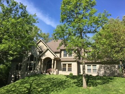 Oswego Single Family Home For Sale: 13 Oakwood Drive