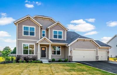 Naperville Single Family Home New: 4331 Littleleaf Road