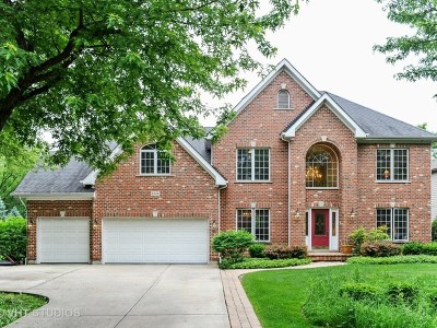 Willowbrook IL Single Family Home For Sale: $624,900