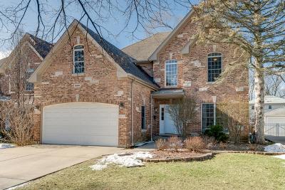 Elmhurst Single Family Home For Sale: 444 South Hillside Avenue