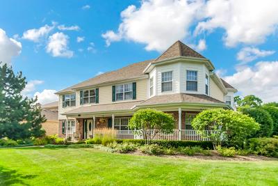 Arlington Single Family Home New: 520 East Haven Street