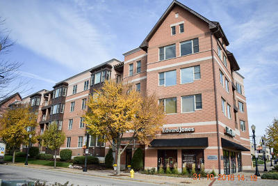 Downers Grove Condo/Townhouse For Sale: 930 Curtiss Street #107