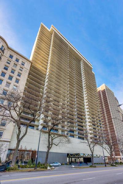 Chicago Condo/Townhouse New: 1212 North Lake Shore Drive #24CN