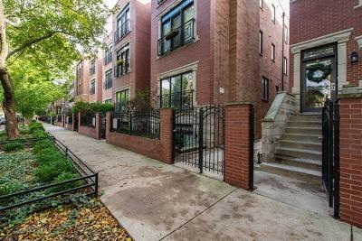 Condo/Townhouse New: 2711 North Wilton Avenue #1