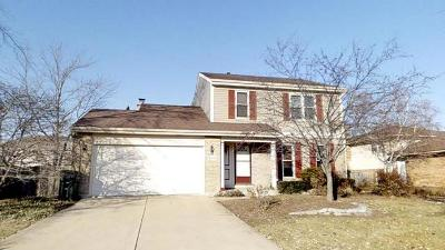 Downers Grove Single Family Home For Sale: 20w506 Westminster Drive