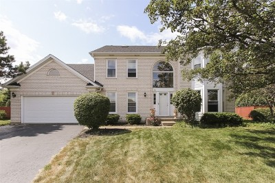 Hoffman Estates Single Family Home New: 5264 Landers Drive