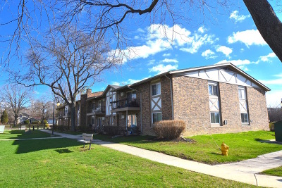 Willowbrook Condo/Townhouse For Sale: 9s020 South Frontage Road #206