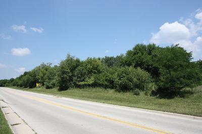 Joliet Residential Lots & Land For Sale: Lot 1 McDonough Street