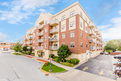 Oak Lawn Condo/Townhouse New: 9440 South 51st Avenue #301