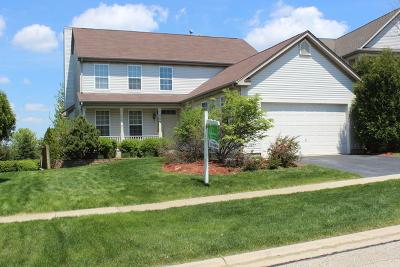 Geneva Single Family Home New: 579 Windett Lane