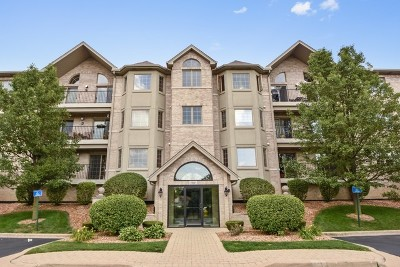 Orland Park Condo/Townhouse For Sale: 11921 Windemere Court #204