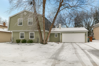 Hoffman Estates Single Family Home New: 1299 West New Britton Drive