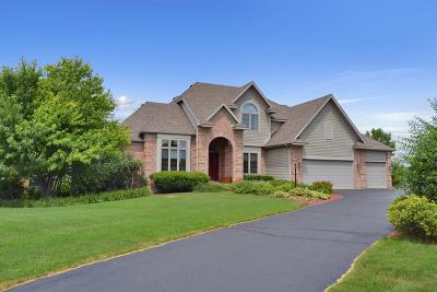 Spring Grove Single Family Home New: 11013 Morning Dove Lane