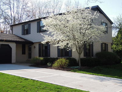 Naperville Single Family Home New: 1534 Chickasaw Drive