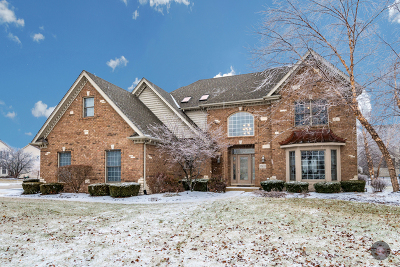 Plainfield Single Family Home For Sale: 11633 Rushmore Drive