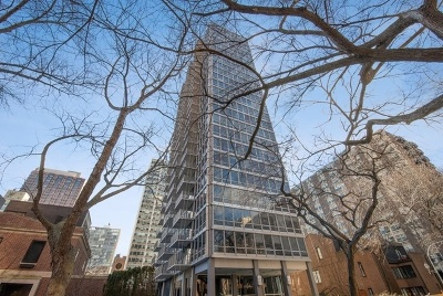 Chicago Condo/Townhouse New: 339 West Barry Avenue #22C