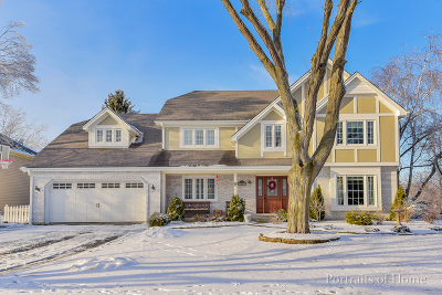 Naperville Single Family Home New: 25w274 Woodstock Court