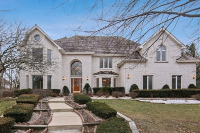 Naperville Single Family Home For Sale: 8s281 Dunham Drive