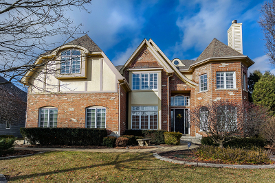 Naperville Single Family Home For Sale: 635 Nanak Court