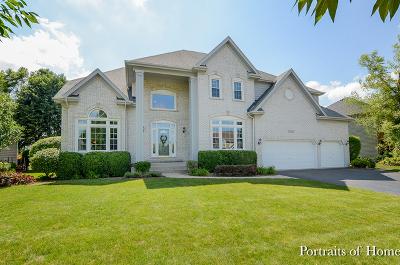 Naperville Single Family Home New: 2519 Skylane Drive