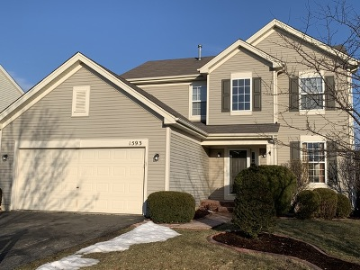 Bolingbrook Single Family Home For Sale: 1593 Glenside Drive