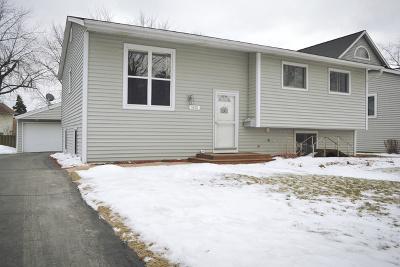 Palatine Single Family Home New: 1431 East Joyce Avenue
