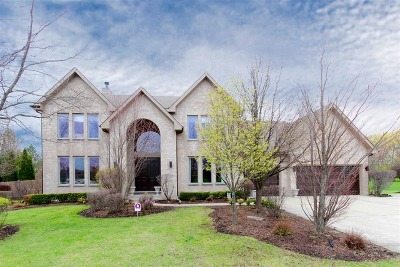 Buffalo Grove Single Family Home For Sale: 2023 Sheridan Road