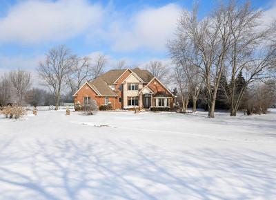 Homer Glen Single Family Home New: 14754 West 147th Street